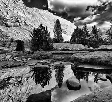 Tarn Reflection in B&W by Cat Connor