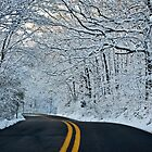 Wet Snow by clime