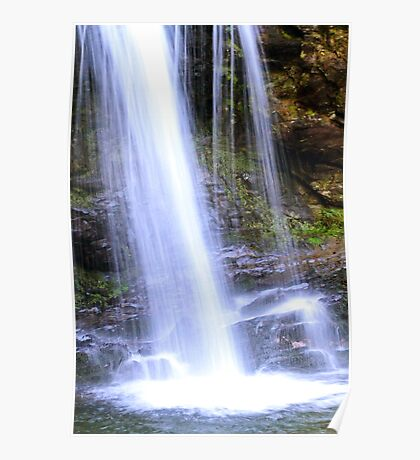 Grotto Falls in the Great Smoky Mountains Poster