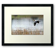 Air Grace Framed Print