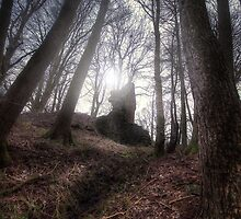 Ruins In The Woods || Fintry, Scotland by Anir Pandit
