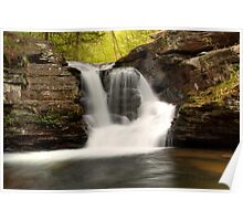 In The Refreshing Spray Of Murray Reynolds Falls Poster