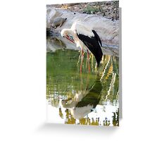 Nature Mirror Greeting Card