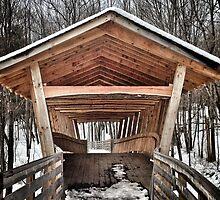 Bridgton Covered Wooden Bridge Maine by Elizabeth Thomas