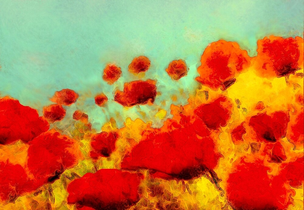 Poppy time'... by Valerie Anne Kelly