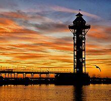 Bicentenial Tower by Heather  Andrews Kosinski