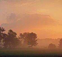 Foggy Morning on the Pond by Heather  Andrews Kosinski