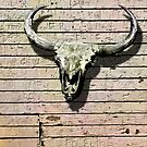 SKULL AND HORNS by Larry Butterworth