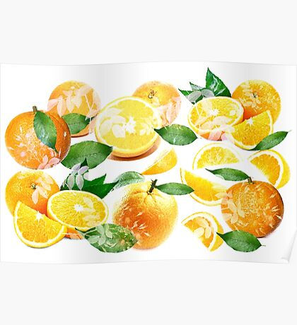 Bitter Oranges from Amalfi Poster