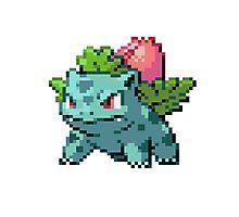 Pixel Ivysaur Photographic Print