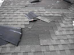 emergency roof leak repairs  by addieturner62