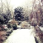 Snowy Garden by Claire Elford