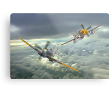 The Old Flying Machine Company - MH434 And Ferocious Frankie Metal Print