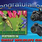 Top Shelf Wildlife Group Banner by imagetj