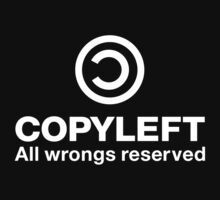 Copyleft All wrongs reserved by LaundryFactory