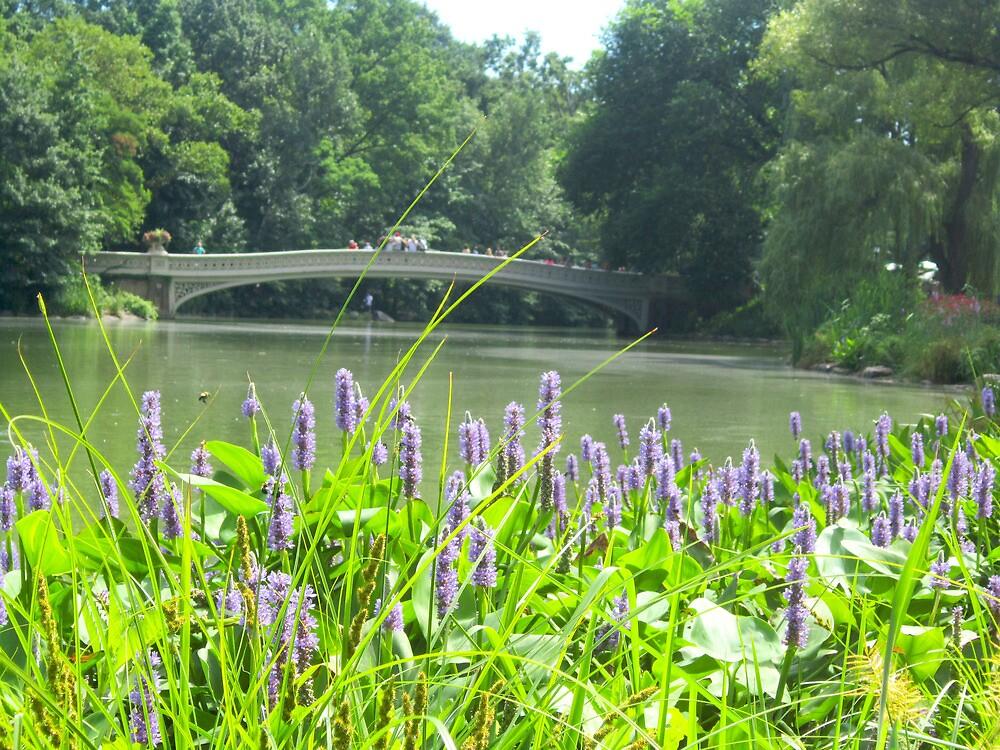 Lavendar Bow Bridge by jessmer