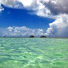 Nylon Pool, Tobago by Wayne Gerard Trotman