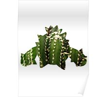 Cacnea used Needle Arm Poster