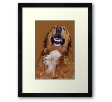 ✌☮ NOW THATS FUNNY- I'M LAUGHING LIKE NOBODYS LOOKIN ✌☮  Framed Print