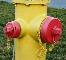 Sometimes you're the hydrant! by mbtilley7