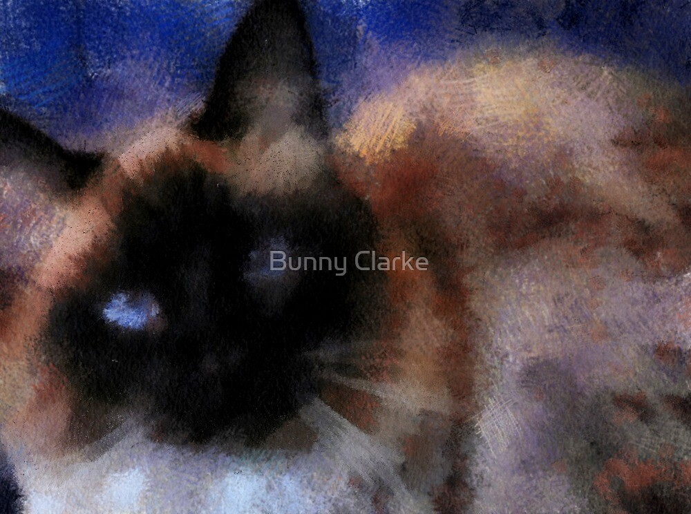 Baby Blue Eyes by Bunny Clarke