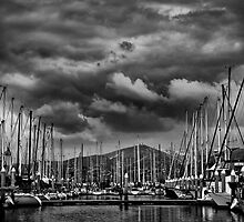 Safe Harbor by Matthew Hill