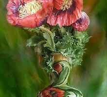 Poppies In Poppy Vase by Carol  Cavalaris