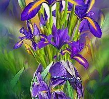 Dutch Iris In Iris Vase by Carol  Cavalaris