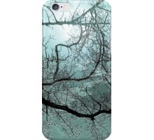 Blue Danube'... iPhone Case/Skin