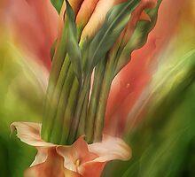 Peach Callas In Calla Vase by Carol  Cavalaris