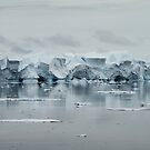Deconstructed Iceberg by DianaC