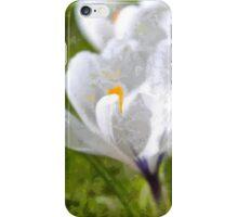 White Crocus iPhone Case/Skin