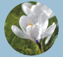 White Crocus Baby Tee