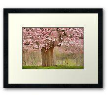 Spring Making Framed Print