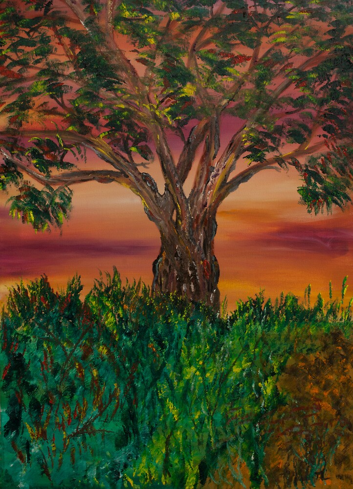 Bottle Brush Tree at sunset by James Bryron Love