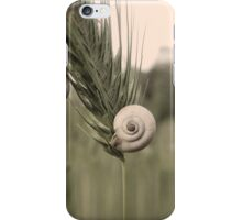 Sleeping Snails iPhone Case/Skin