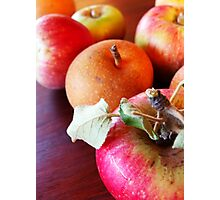 179/365 fruitful Photographic Print