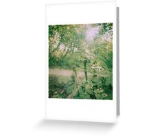 Fairies  Greeting Card