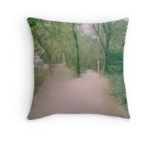 Double Paths Throw Pillow