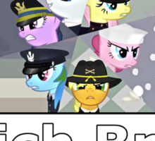 Military Bronies: Which Brony Are You? Sticker
