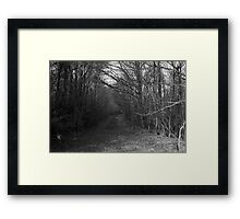 Path with Trees Framed Print
