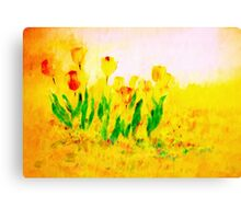 Tulips in Springtime'... Canvas Print