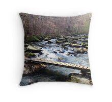 Hurricane Creek Crossing Throw Pillow