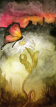 Butterfly by Heather Reid