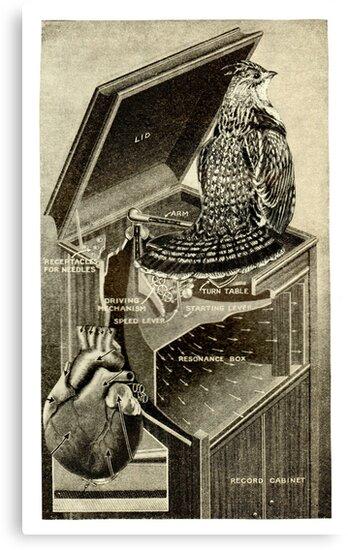 Bird Song. by Andreav Nawroski
