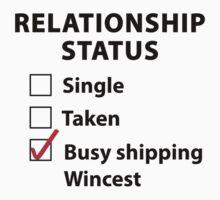 Relationship Status Wincest Shirt by HarmonyByDesign