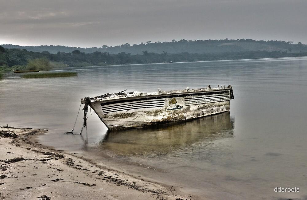 Old Rustic Boat by ddarbela