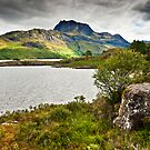 Slioch & Loch Maree by David Lewins