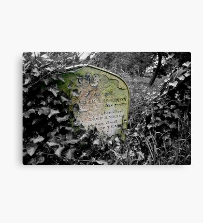 March Of Time Canvas Print