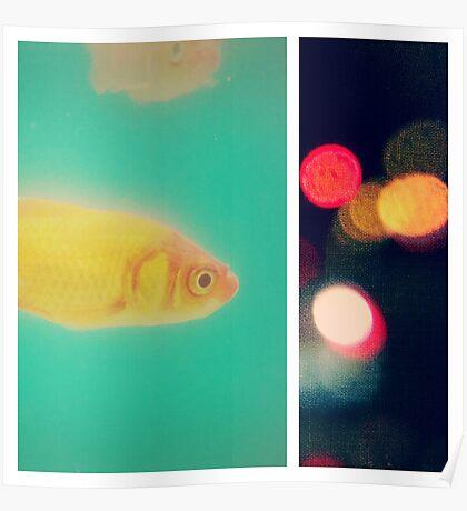 the fish bowl diaries Poster